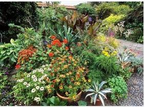 What You Can Expect From a Garden Learning Course